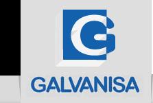 Logo Galvanisa